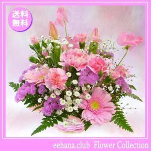 花 ギフト バースデー2月の誕生花チューリップピンクアレンジ3,500円 送料無料  花言葉付き チューリップ|eehana