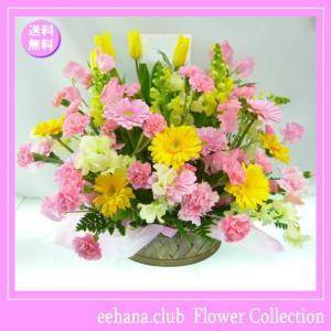 花 ギフト バースデー2月の誕生花チューリップ プリティーアレンジ5,000円 送料無料  花言葉付き チューリップ   あすつく対応|eehana