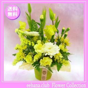 花 ギフト バースデー2月の誕生花チューリップイエローアレンジ3,500円 送料無料  花言葉付き チューリップ   あすつく対応|eehana