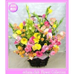 花 ギフト バースデー2月の誕生花チューリップファンタジーアレンジ10,000円 送料無料  花言葉付き チューリップ   あすつく対応|eehana