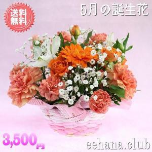 花 ギフト バースデー5月の誕生花 オレンジアレンジ3,500円 送料無料   あすつく対応   花言葉カード付 eehana