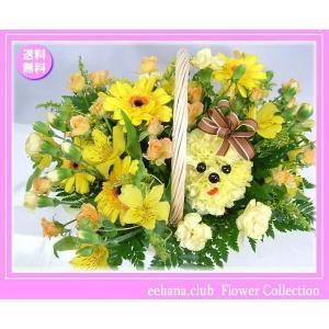 花 ギフト バースデー5月の誕生花 隠れプードル5,000円 送料無料   花言葉カード付 eehana