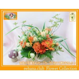 花 ギフト バースデー10月の誕生花 宝石箱アレンジ花言葉付き4,000円 送料無料   ガーベラ   写真付きメッセージ選択可|eehana