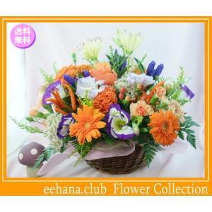 花 ギフト バースデー10月の誕生花 オータムアレンジ5,000円 送料無料  花言葉付き ガーベラ   写真付きメッセージ選択可|eehana