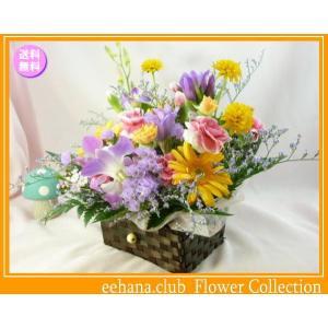花 ギフト バースデー10月の誕生花 宝箱アレンジ3,500円 送料無料  花言葉付き ガーベラ   写真付きメッセージ選択可|eehana