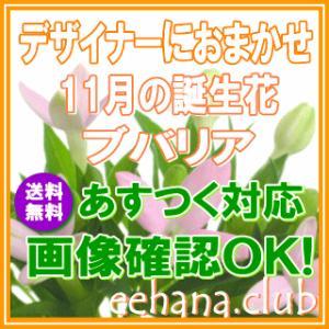 花 ギフト バースデー11月の誕生花 デザイナーにおまかせ3,500円 送料無料 フラワーアレンジ・花束