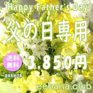 父の日に贈る花 デザイナーにおまかせ3,500円【送料無料】  花束・アレンジ・プリザーブドフラワー・はちもの|eehana