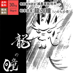 米 お米 30kg 龍の瞳 岐阜県産 特別栽培米 令和元年産|eekome