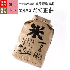 米 お米 30kg だて正夢 特別栽培米 宮城県産 令和2年産|eekome