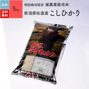 米 お米 5kg コシヒカリ 新潟県佐渡産 特別栽培米 白米 令和2年産|eekome