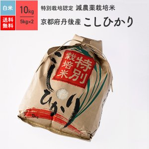 米 お米 10kg コシヒカリ 京都府丹後産 特別栽培米 白米 令和2年産|eekome