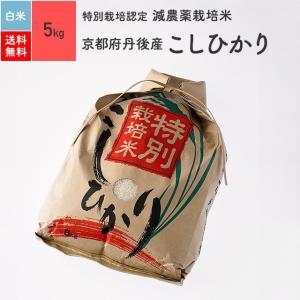 米 お米 5kg コシヒカリ 京都府丹後産 特別栽培米 白米 令和2年産|eekome