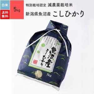 米 お米 5kg コシヒカリ 魚沼産 特別栽培米 白米 令和2年産|eekome