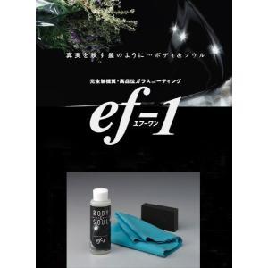 高品位ガラスコーティング剤 ef−1  20%off|efco|03