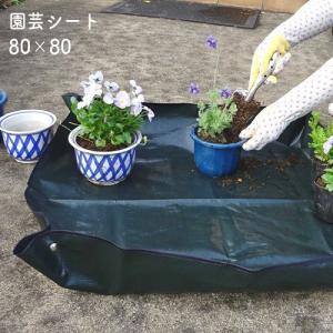 ガーデニングに必携!土が飛び散らず掃除しやすい園芸シートランキング≪おすすめ10選≫の画像