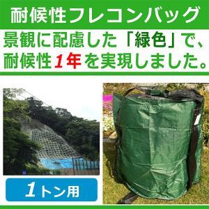 千尋バッグ 耐候性タイプ MB-1G 10枚入 耐候年数:約1年 緑色の1トンバッグ モリリン シB 代引不可|efiluz