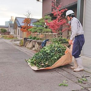 植木屋 掃除用シート 1800mm×1800mm 植芳 庭師 庭 そうじ 草刈り 剪定 枝 葉 ゴミ 造園 農作業 丈夫 しっかり 長持ち|efiluz