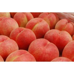 福島 桃源郷の桃 3kg 8〜10玉  もも 畑から直送 完熟 フルーツ 大玉 「ふくしまプライド。体感キャンペーン(果物」|egao-fukushima