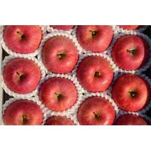 サンふじりんご 3kg(8〜10玉) 贈答用 |egao-fukushima