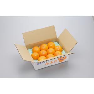 会津みしらず御山柿 3kg 4Lサイズ(10玉) 贈答用 大玉 かき |egao-fukushima