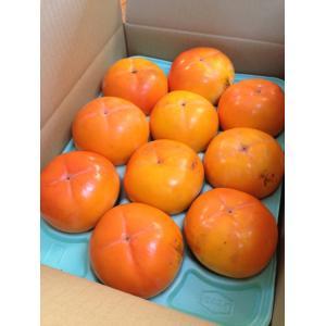 会津みしらず御山柿 3kg 4Lサイズ(10玉) 贈答用 大玉 かき 「ふくしまプライド。体感キャンペーン」20%OFFクーポン有|egao-fukushima|02