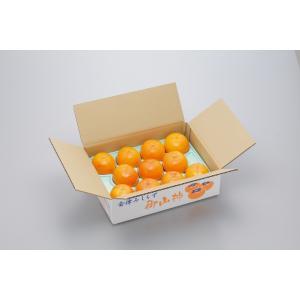 会津みしらず御山柿 3kg 3Lサイズ(11玉) 贈答用 かき |egao-fukushima