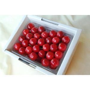 さくらんぼ 佐藤錦 特秀 500g 贈答用  畑の宝石箱 極上のさくらんぼ 手詰め ふくしまプライド。体感キャンペーン(果物/野菜)|egao-fukushima