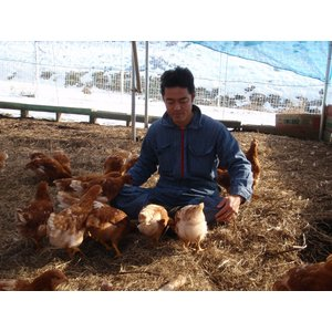 会津 平飼い自然卵  娘のための卵 10個入×2パック egao-fukushima 02