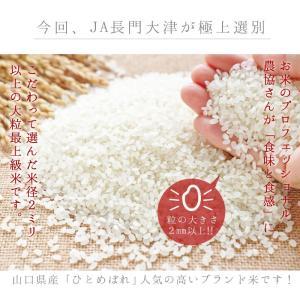 お米 お試し 送料無料 選べる白米 玄米 山口...の詳細画像1