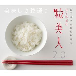 お米 お試し 送料無料 選べる白米 玄米 山口...の詳細画像5
