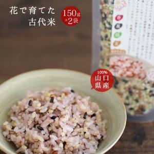 雑穀米 国産 送料無料「花で育てた古代米 2袋」発芽玄米入り...
