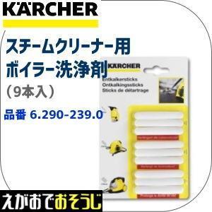 ケルヒャー スチームクリーナー用 スケール除去剤 RM511  (6.290-239)(←6.295-206)|egaonmo