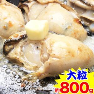 【大粒】広島県産かき剥き身 約800g|egaotakumi