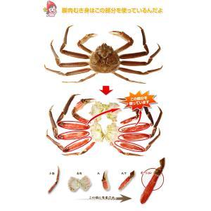 かに カニ 蟹 ズワイガニ ポーション | 3L〜2L生ずわい蟹「かにしゃぶ」脚肉むき身 1kg超|egaotakumi|06