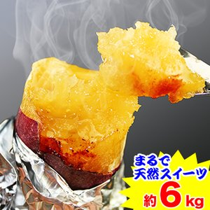 まるで天然のスイーツ 鹿児島県産サツマイモ「蜜芋」約6kg(約3kg×2箱)|egaotakumi