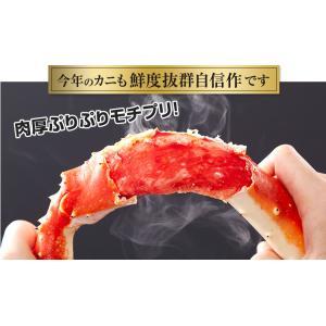 かに カニ 蟹 タラバ蟹 たらば蟹 たらばがに タラバガニ | ボイルたらばがに肩脚 2肩前後(約1.6kg)【送料無料】|egaotakumi|03