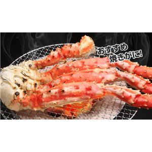 かに カニ 蟹 タラバ蟹 たらば蟹 たらばがに タラバガニ | ボイルたらばがに肩脚 2肩前後(約1.6kg)【送料無料】|egaotakumi|04