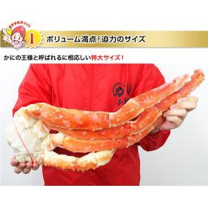 かに カニ 蟹 タラバ蟹 たらば蟹 たらばがに タラバガニ | ボイルたらばがに肩脚 2肩前後(約1.6kg)【送料無料】|egaotakumi|05