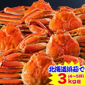 [かに カニ 蟹 ズワイ ずわい ズワイ蟹 ずわい蟹 ずわいがに]かに本舗北海道紋別 浜茹で ずわいがに姿 4杯