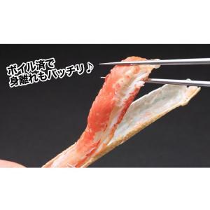 かに カニ 蟹 ズワイ蟹 ずわい蟹 ずわいがに ズワイガニ | 訳あり5Lボイル本ずわいがに肩脚 約2.6kg(複数折れ)|egaotakumi|04