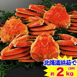 かに カニ 蟹 ズワイガニ ボイル| 北海道紋別 浜茹で ずわい蟹姿 3杯(約2kg)|egaotakumi