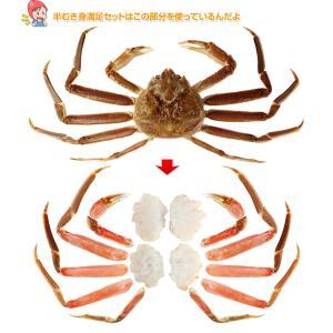 かに カニ 蟹 ズワイガニ |特大7L〜5L生ずわい蟹半むき身満足セット 2.7kg超 【総重量約3.5kg】【送料無料】|egaotakumi|07