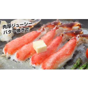 かに カニ 蟹 タラバガニ たらば蟹 | 特大7L生たらば肩脚 1肩(約1.3kg)【送料無料】|egaotakumi|04