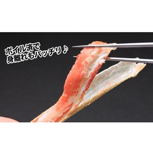かに カニ 蟹 ズワイガニ ボイル |大型4Lボイルずわい蟹肩脚 14肩(約5kg)【送料無料】|egaotakumi|04