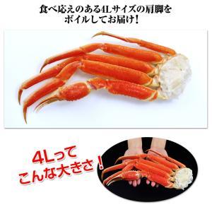 かに カニ 蟹 ズワイガニ ボイル |大型4Lボイルずわい蟹肩脚 14肩(約5kg)【送料無料】|egaotakumi|05