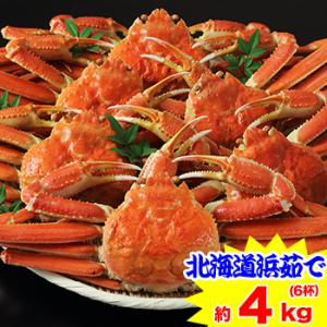 かに カニ 蟹 ズワイガニ ボイル| 北海道紋別浜茹で ずわい蟹姿 6杯|egaotakumi