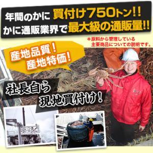 かに カニ 蟹 ズワイガニ ボイル  北海道紋別浜茹で ずわいがに姿 2杯(約1.7kg) egaotakumi 02