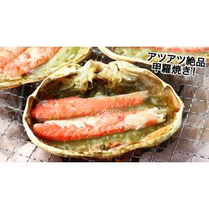 かに カニ 蟹 ズワイガニ ボイル  北海道紋別浜茹で ずわいがに姿 2杯(約1.7kg) egaotakumi 05