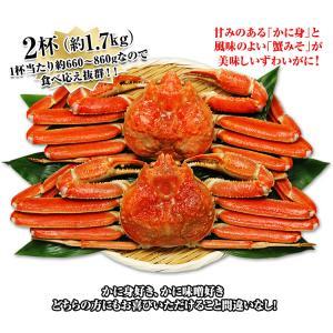 かに カニ 蟹 ズワイガニ ボイル  北海道紋別浜茹で ずわいがに姿 2杯(約1.7kg) egaotakumi 06