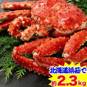 かに カニ 蟹 タラバ蟹 たらば蟹 たらば蟹 タラバガニ | 北海道紋別浜茹で たらばがに姿 2.3kg超【送料無料】|egaotakumi